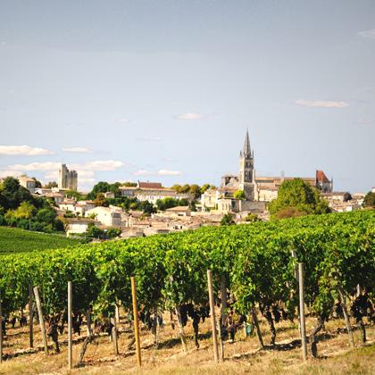 Offrir le vignoble de Bordeaux